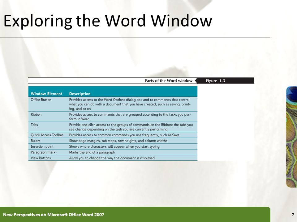 XP Exploring the Word Window New Perspectives on Microsoft Office Word 20077