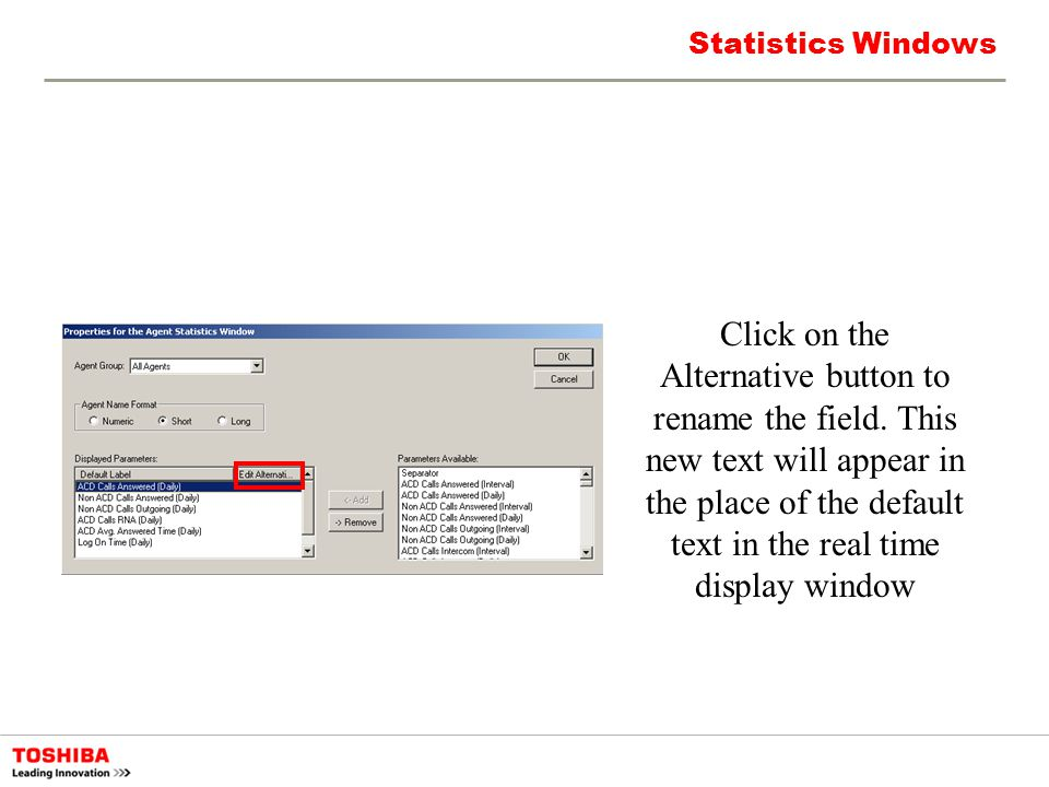 Statistics Windows Click on the Alternative button to rename the field. This new text will appear in the place of the default text in the real time di