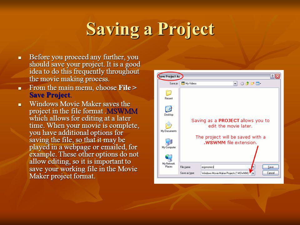 Steps to Import Pictures (continue) Drag your pictures to the Storyboard area of the window. The Storyboard is where you will build your movie. Drag y