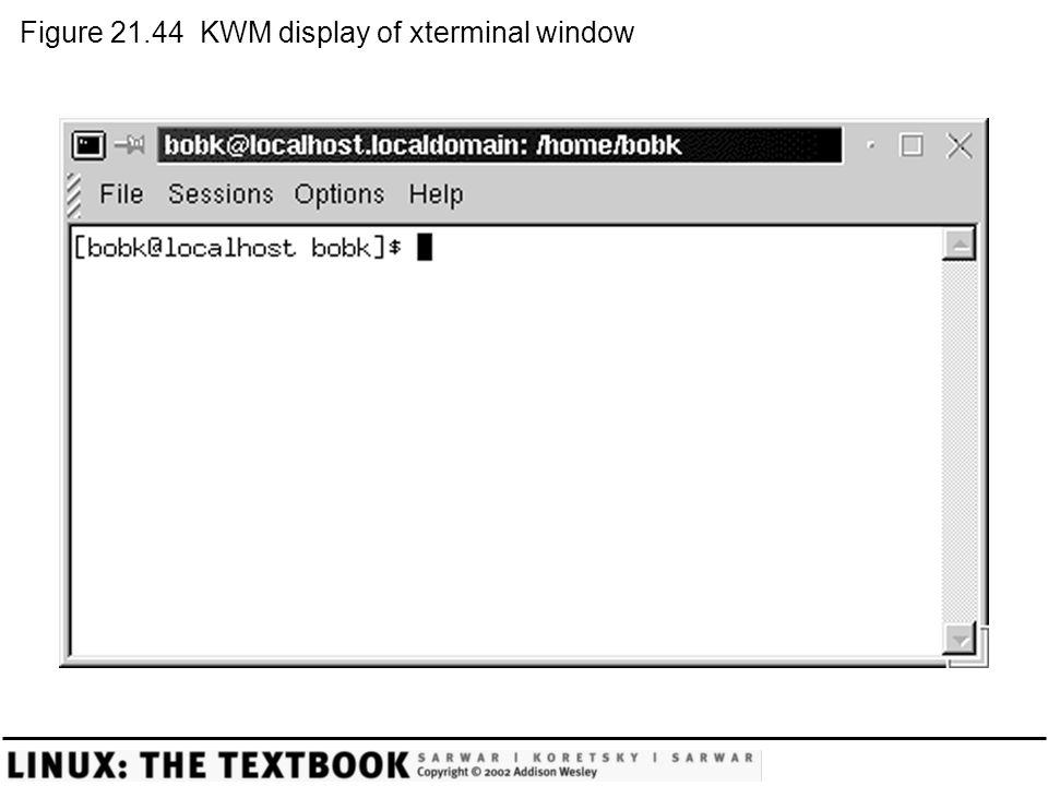 Figure 21.44 KWM display of xterminal window