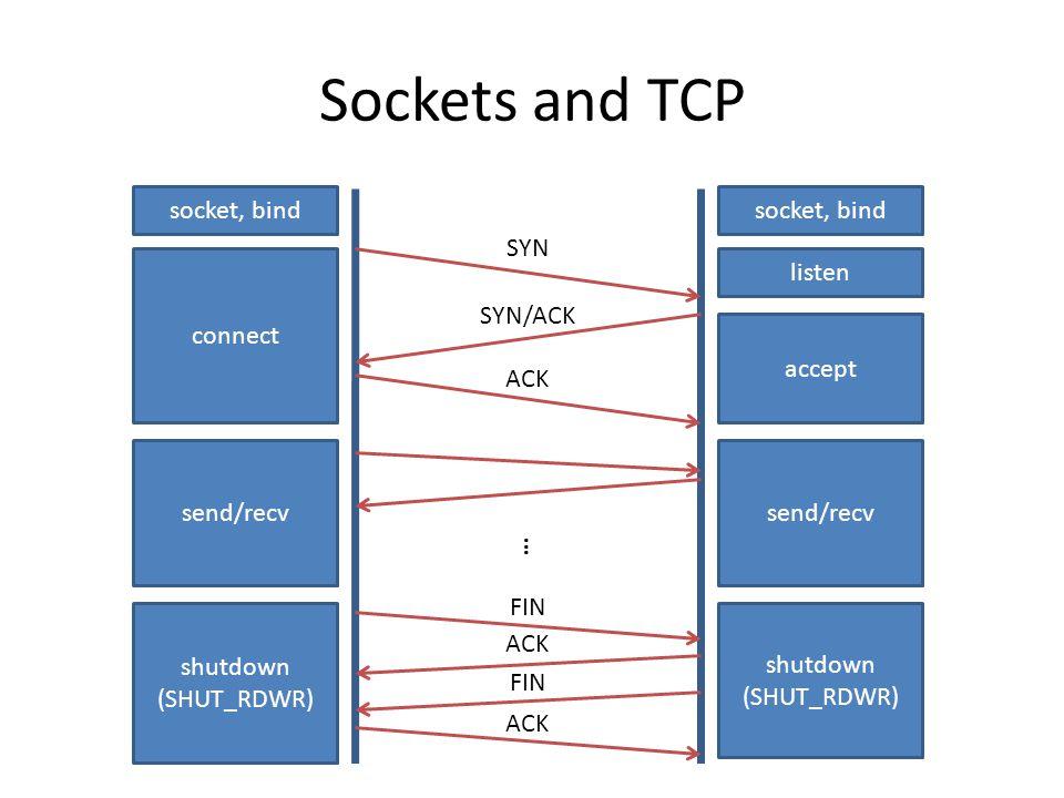 Sockets and TCP connect send/recv shutdown (SHUT_RDWR) listen accept SYN/ACK SYN ACK socket, bind send/recv FIN ACK FIN ACK …