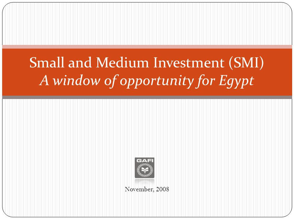 Small and Medium Investment (SMI) A window of opportunity for Egypt November, 2008
