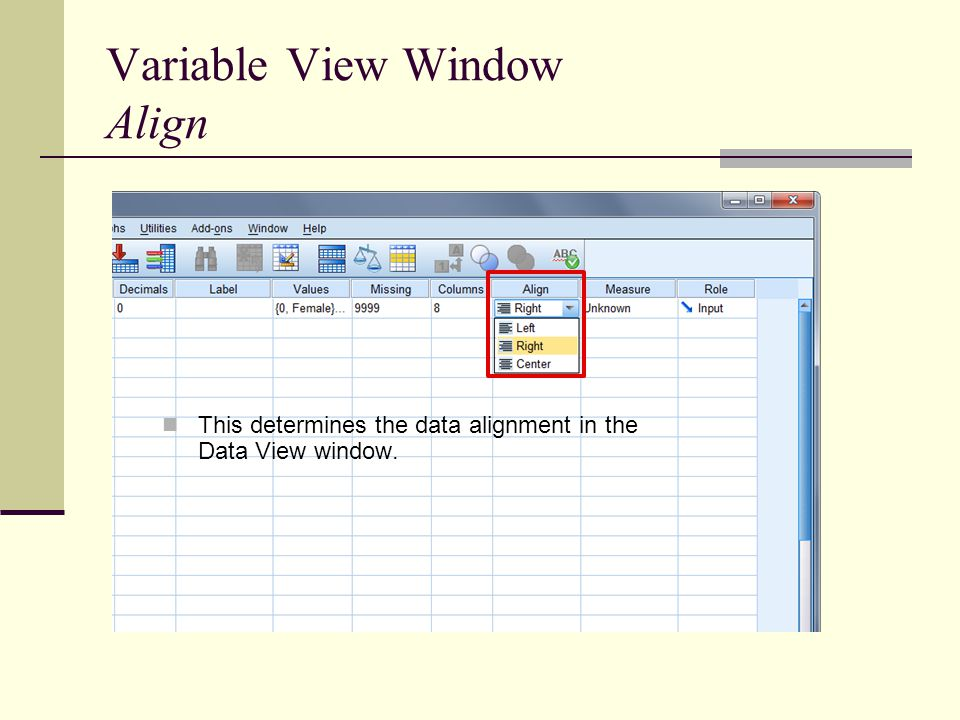 Variable View Window Align This determines the data alignment in the Data View window.