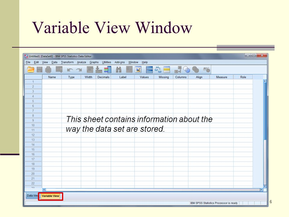Variable View Window 6 This sheet contains information about the way the data set are stored.