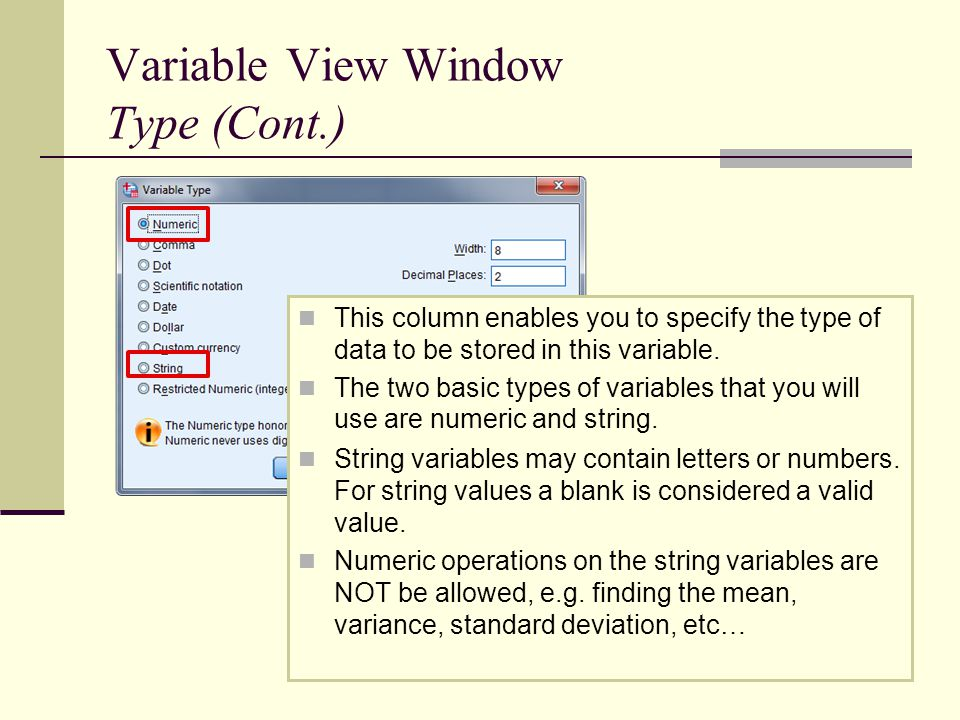 Variable View Window Type (Cont.) This column enables you to specify the type of data to be stored in this variable.