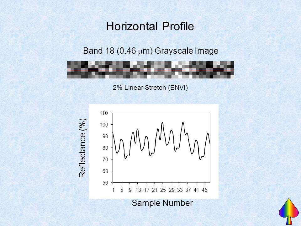 Band 18 (0.46 m) Grayscale Image 2% Linear Stretch (ENVI) Horizontal Profile 50 60 70 80 90 100 110 159131721252933374145 Sample Number Reflectance (%