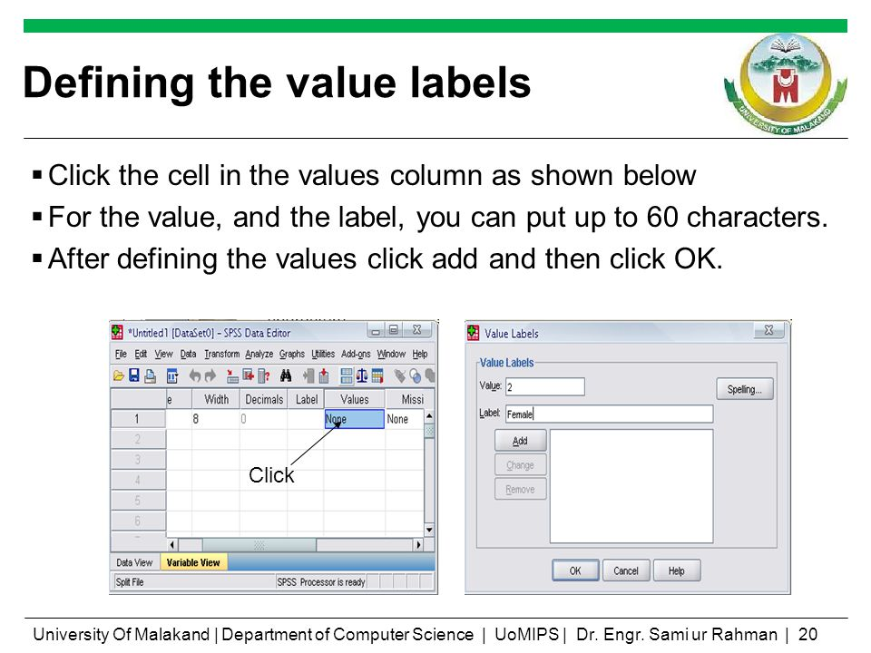 Defining the value labels Click the cell in the values column as shown below For the value, and the label, you can put up to 60 characters. After defi