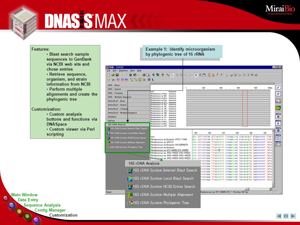 Example 1: Identify microorganism by phylogenic tree of 16 rRNA Features: Blast search sample sequences to GenBank via NCBI web site and chose entries Retrieve sequence, organism, and strain information from NCBI Perform multiple alignments and create the phylogenic tree Customization: Custom analysis buttons and functions via DNASpace Custom viewer via Perl scripting Main Window Sequence Analysis Contig Manager Data Entry Customization