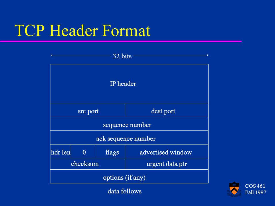 COS 461 Fall 1997 TCP Header Format IP header src portdest port sequence number ack sequence number hdr len0flagsadvertised window checksumurgent data ptr options (if any) data follows 32 bits