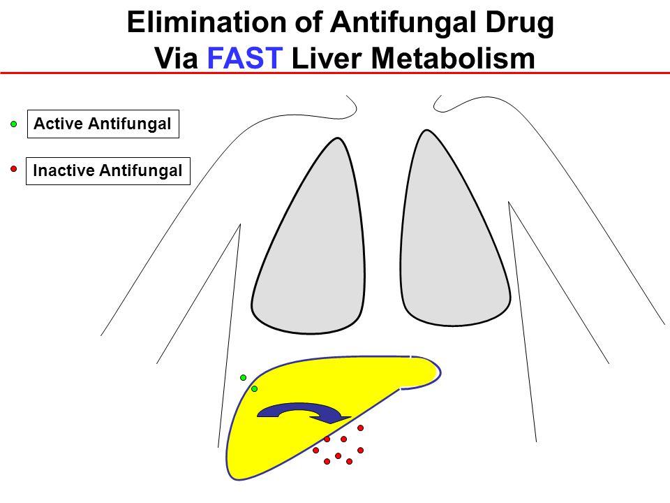 Inactive Antifungal Active Antifungal Elimination of Antifungal Drug Via FAST Liver Metabolism