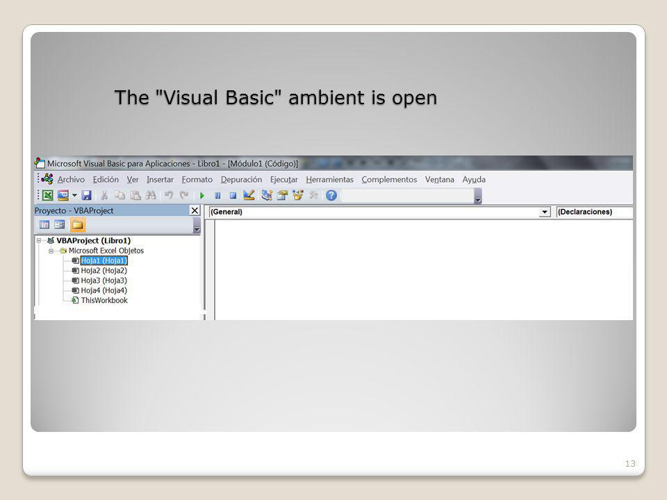 The Visual Basic ambient is open 13