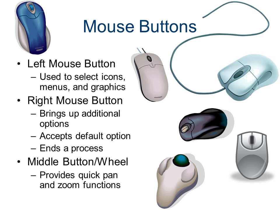 Mouse Buttons Left Mouse Button –Used to select icons, menus, and graphics Right Mouse Button –Brings up additional options –Accepts default option –E