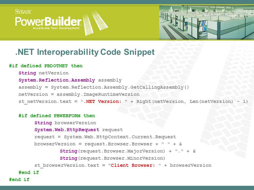 .NET Interoperability Code Snippet #if defined PBDOTNET then String netVersion System.Reflection.Assembly assembly assembly = System.Reflection.Assemb