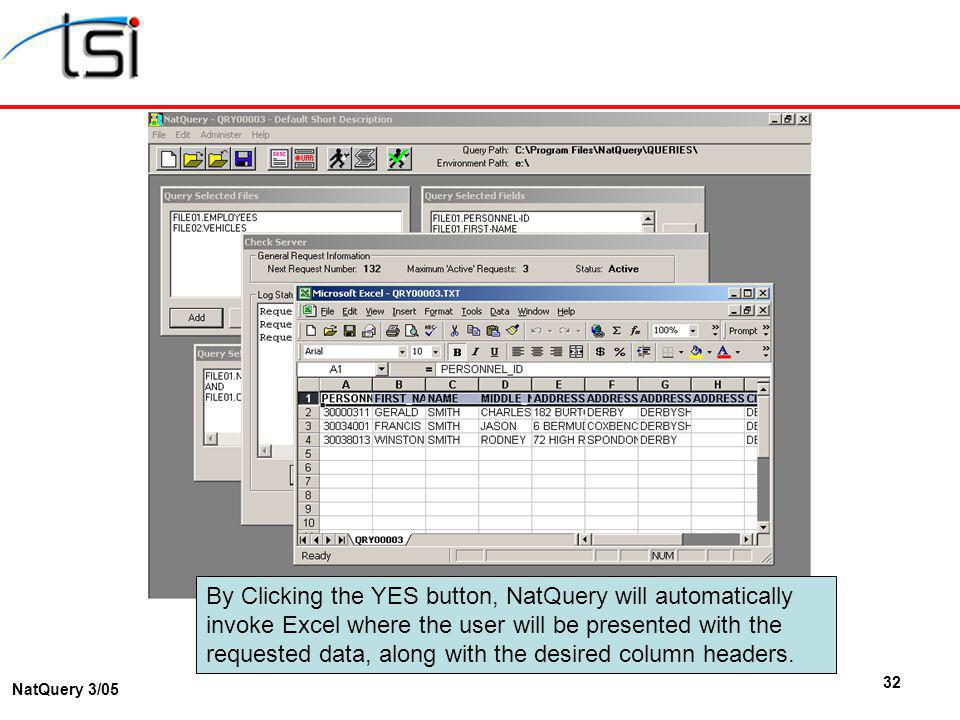 32 NatQuery 3/05 By Clicking the YES button, NatQuery will automatically invoke Excel where the user will be presented with the requested data, along