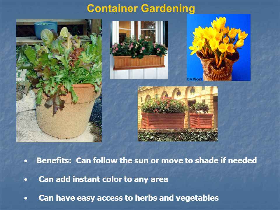 Benefits: Can follow the sun or move to shade if needed Can add instant color to any area Can have easy access to herbs and vegetables Container Gardening