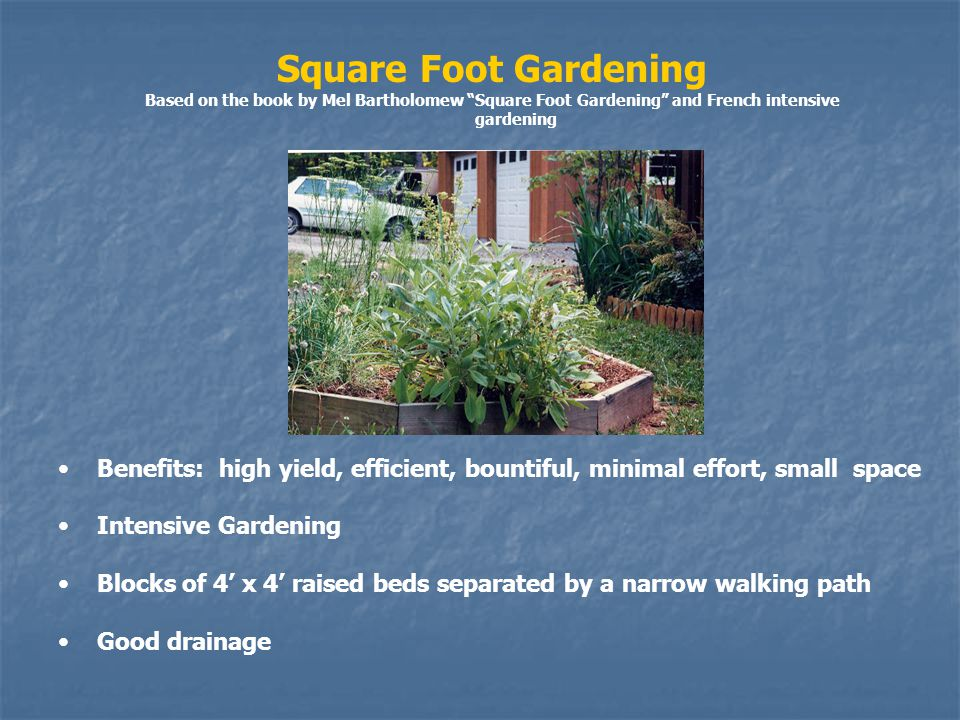 Square Foot Gardening Based on the book by Mel Bartholomew Square Foot Gardening and French intensive gardening Benefits: high yield, efficient, bountiful, minimal effort, small space Intensive Gardening Blocks of 4 x 4 raised beds separated by a narrow walking path Good drainage