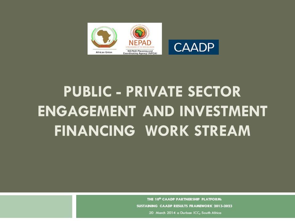 2 5 YEAR ACTION PLAN – CONNECTING THE CONNECTORS: CAADP-GROW AFRICA PUBLIC PRIVATE PARTNERSHIP PLATFORM-ESTABLISH A PLATFORM OF PLATFORMS Accelerating and Deepening Inclusive Value Chain and Public-Private Partnership Connections Accelerating Environmental Transformation: Policy, Skills and Capacities,Trade, Finance, Infrastructure and Ecosystems Promoting Sector Development around Market Demand, Particularly National, Regional and Continental Demand Monitoring, Evaluating, Modelling, Knowledge Management and Dissemination
