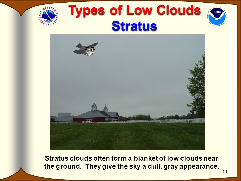 Types of Low Clouds Stratus Types of Low Clouds Stratus Stratus clouds often form a blanket of low clouds near the ground. They give the sky a dull, g