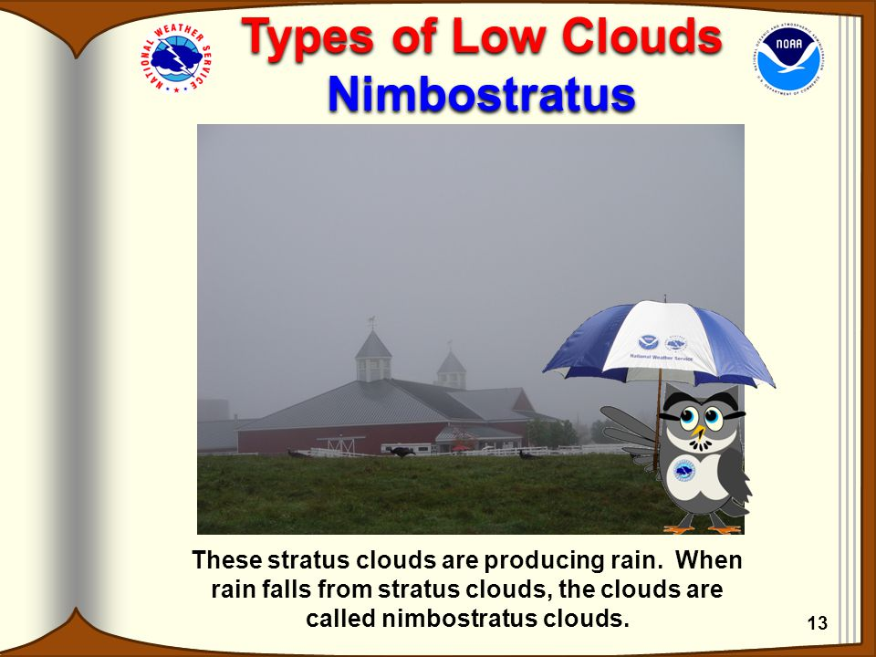 Types of Low Clouds Nimbostratus Types of Low Clouds Nimbostratus These stratus clouds are producing rain. When rain falls from stratus clouds, the cl