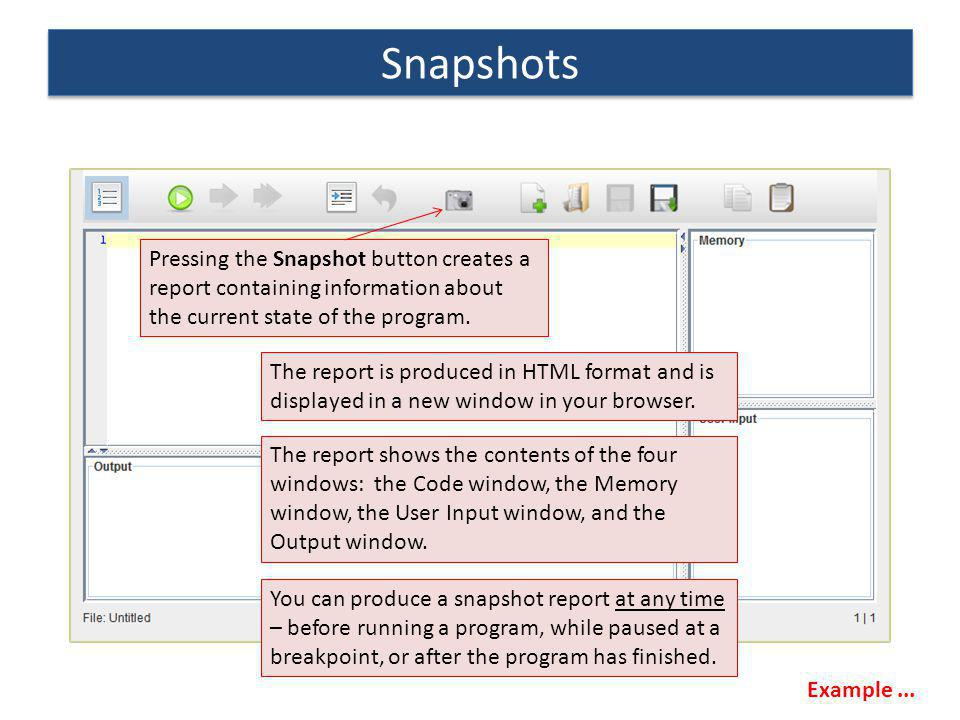 Pressing the Snapshot button creates a report containing information about the current state of the program. The report shows the contents of the four