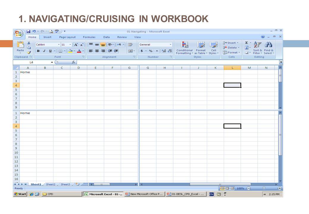 1. NAVIGATING/CRUISING IN WORKBOOK