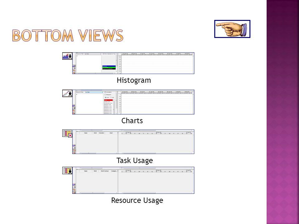 Histogram Resource Usage Task Usage Charts