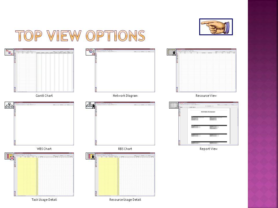 Gantt ChartResource ViewNetwork Diagram WBS ChartRBS ChartReport View Task Usage DetailResource Usage Detail