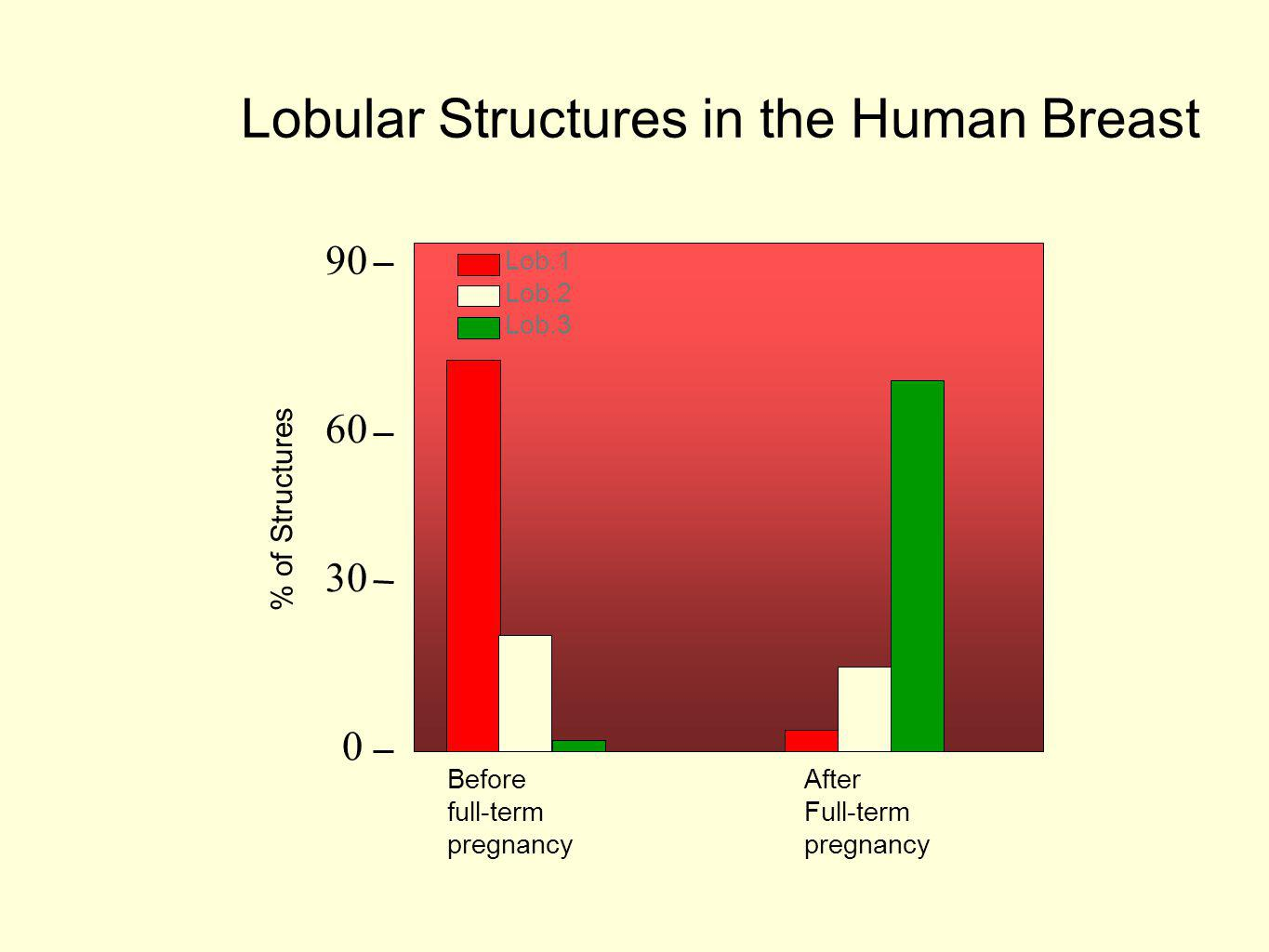 0 30 60 90 Lob.1 Lob.2 Lob.3 Lobular Structures in the Human Breast % of Structures After Full-term pregnancy Before full-term pregnancy