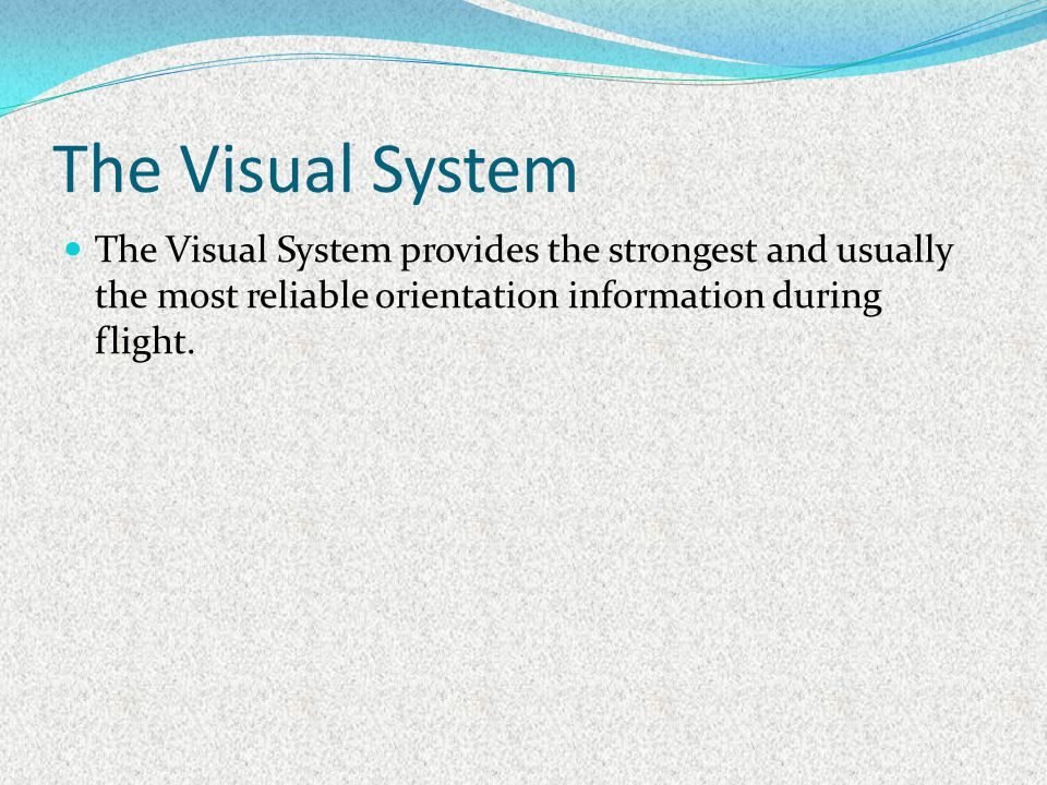 The Visual System The Visual System provides the strongest and usually the most reliable orientation information during flight.