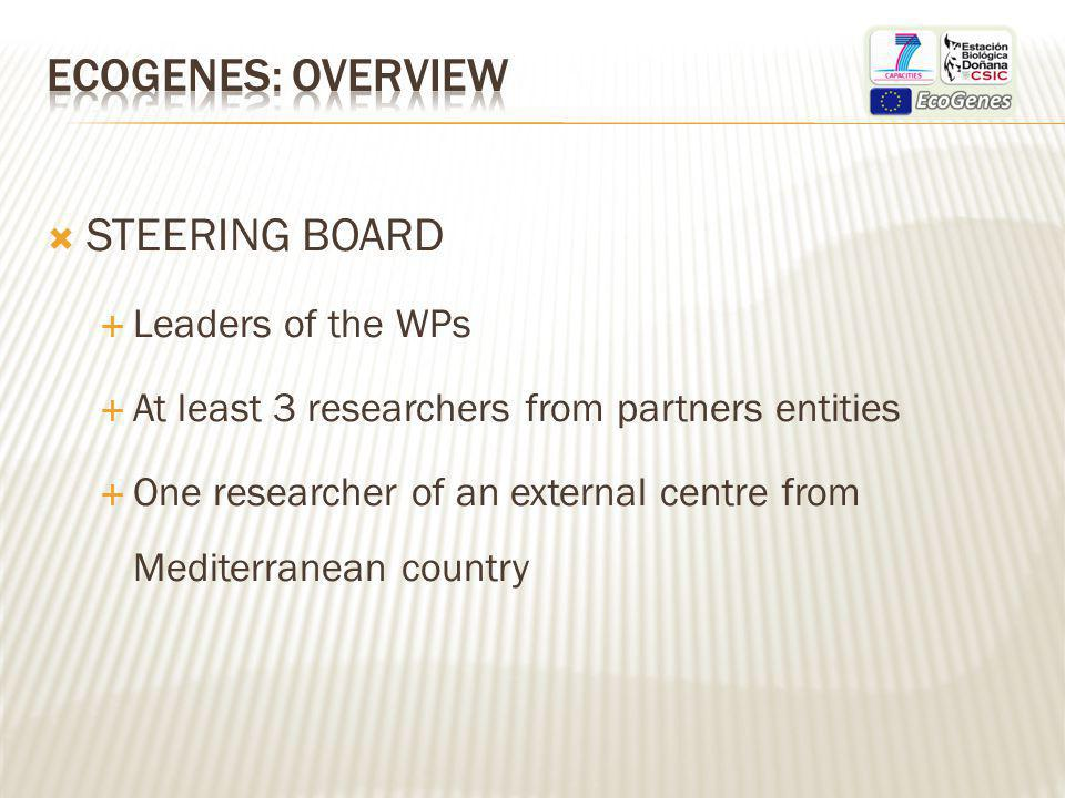 STEERING BOARD Leaders of the WPs At least 3 researchers from partners entities One researcher of an external centre from Mediterranean country