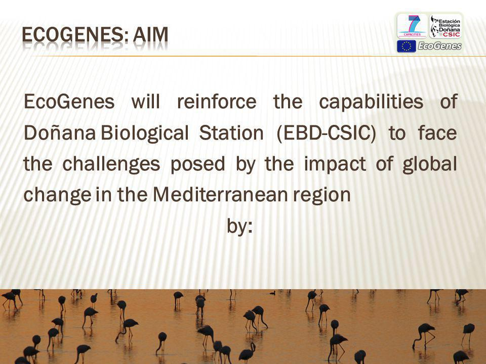 EcoGenes will reinforce the capabilities of Doñana Biological Station (EBD-CSIC) to face the challenges posed by the impact of global change in the Mediterranean region by: