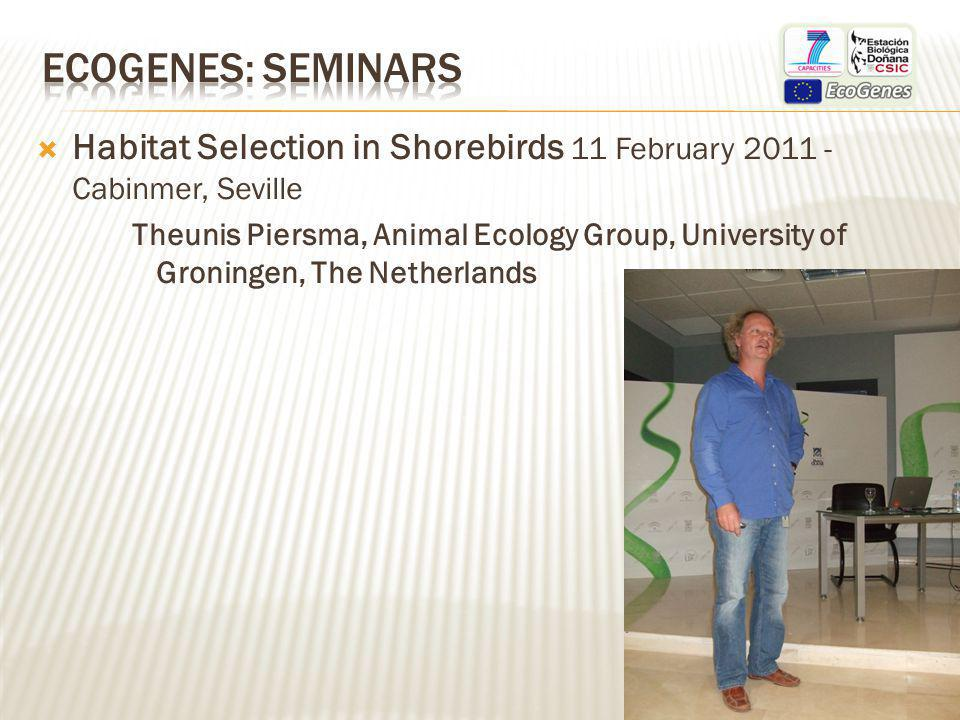 Habitat Selection in Shorebirds 11 February 2011 - Cabinmer, Seville Theunis Piersma, Animal Ecology Group, University of Groningen, The Netherlands