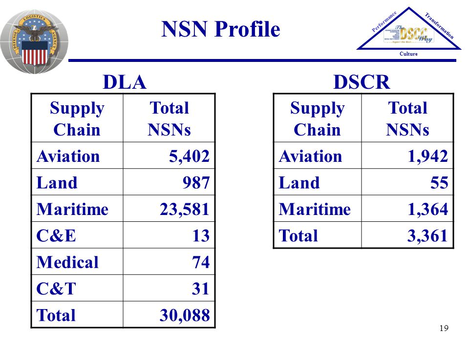 19 NSN Profile Performance Transformation Culture Supply Chain Total NSNs Aviation5,402 Land987 Maritime23,581 C&E13 Medical74 C&T31 Total30,088 DLA S