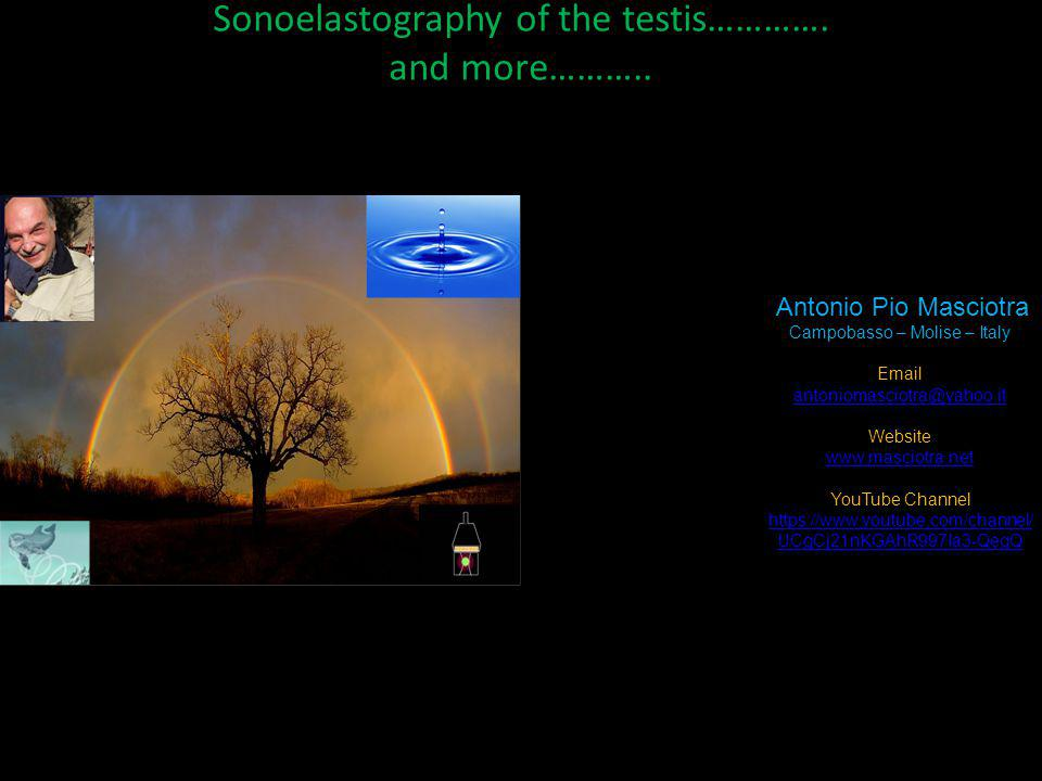 Sonoelastography of the testis…………. and more………..
