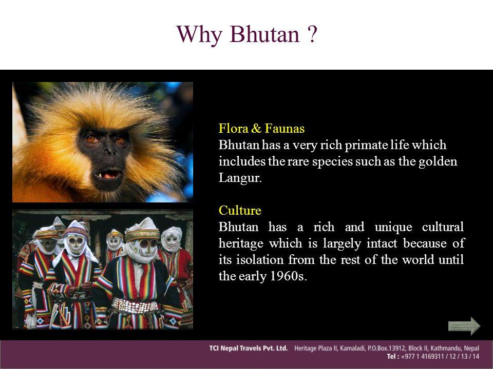 Why Bhutan ? Flora & Faunas Bhutan has a very rich primate life which includes the rare species such as the golden Langur.Culture Bhutan has a rich an