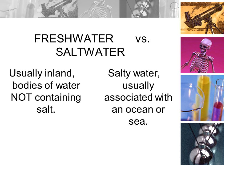 FRESHWATER vs. SALTWATER Usually inland, bodies of water NOT containing salt. Salty water, usually associated with an ocean or sea. 128