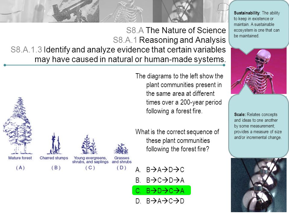 S8.A The Nature of Science S8.A.1 Reasoning and Analysis S8.A.1.3 Identify and analyze evidence that certain variables may have caused in natural or h