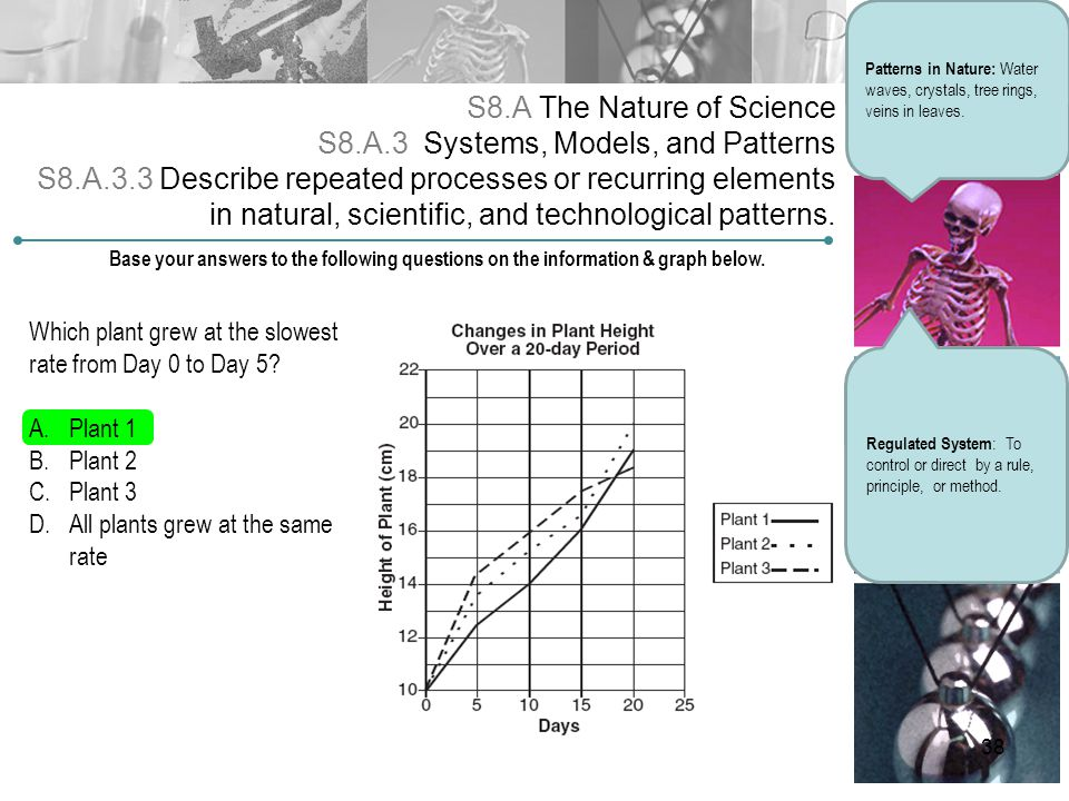 S8.A The Nature of Science S8.A.3 Systems, Models, and Patterns S8.A.3.3 Describe repeated processes or recurring elements in natural, scientific, and