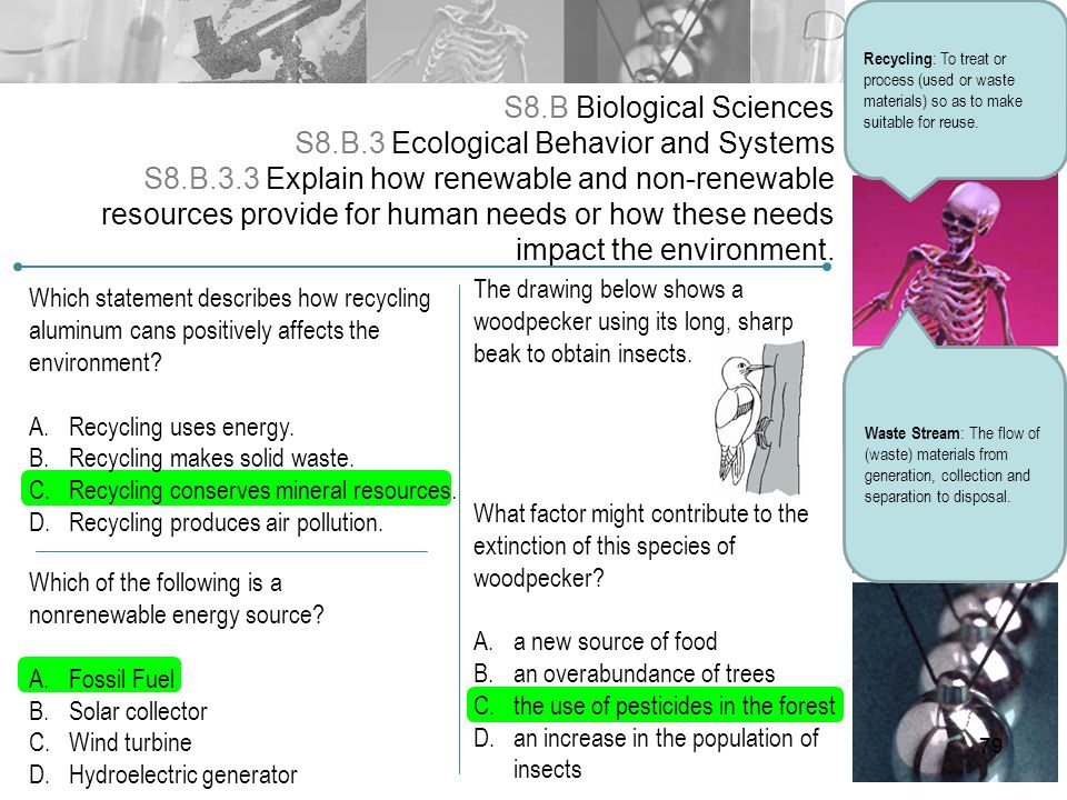 S8.B Biological Sciences S8.B.3 Ecological Behavior and Systems S8.B.3.3 Explain how renewable and non-renewable resources provide for human needs or