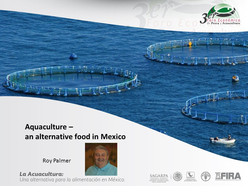 Aquaculture – an alternative food in Mexico Roy Palmer