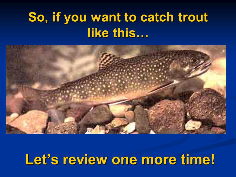 So, if you want to catch trout like this… Lets review one more time!