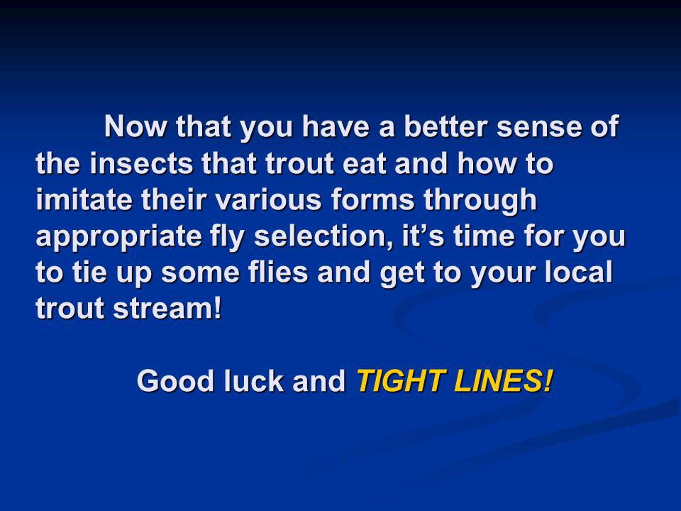 Now that you have a better sense of the insects that trout eat and how to imitate their various forms through appropriate fly selection, its time for you to tie up some flies and get to your local trout stream.
