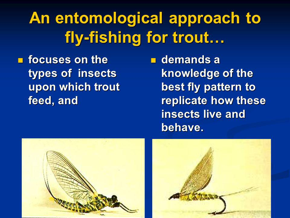 An entomological approach to fly-fishing for trout… focuses on the types of insects upon which trout feed, and focuses on the types of insects upon which trout feed, and demands a knowledge of the best fly pattern to replicate how these insects live and behave.