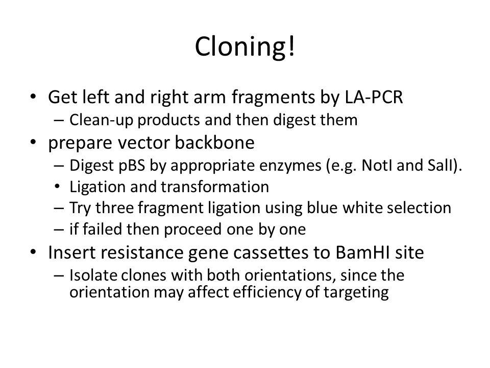 Cloning.