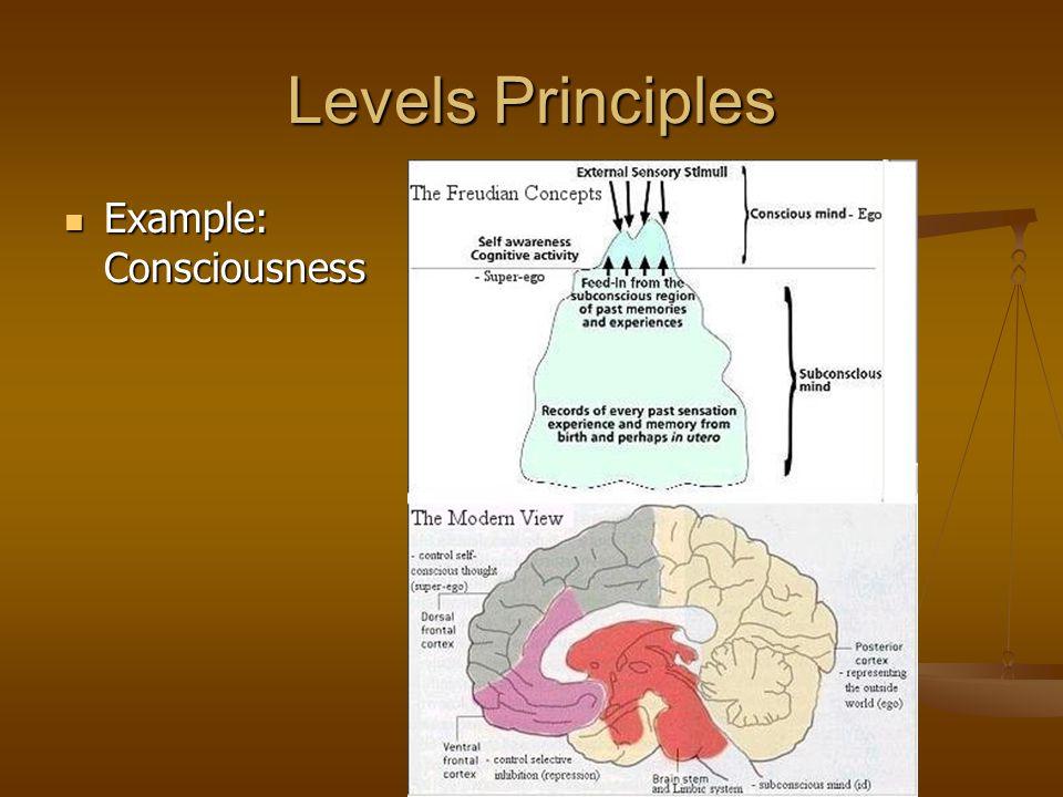 Levels Principles Example: Consciousness Example: Consciousness