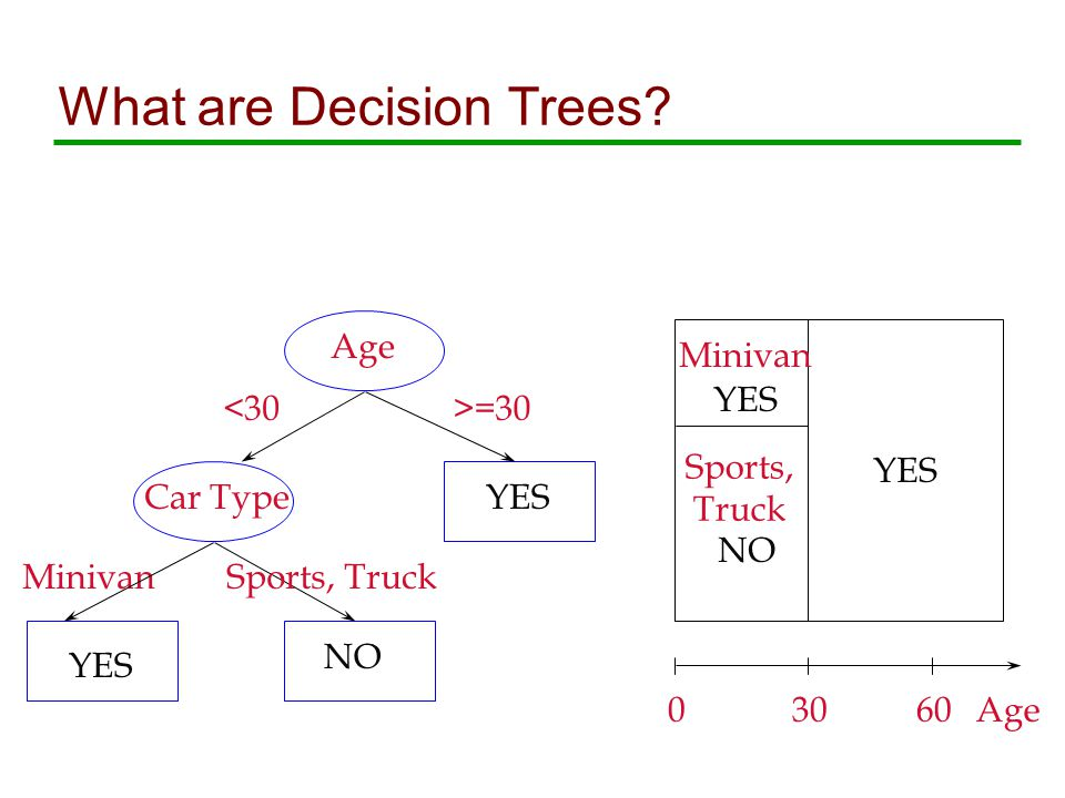 What are Decision Trees.