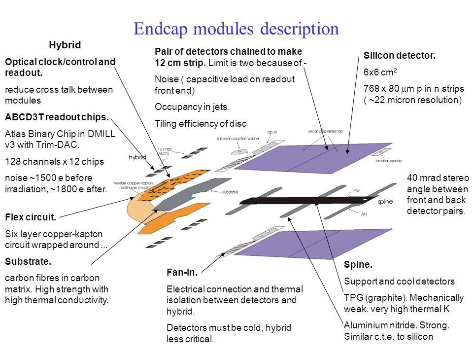 Endcap modules description Silicon detector.