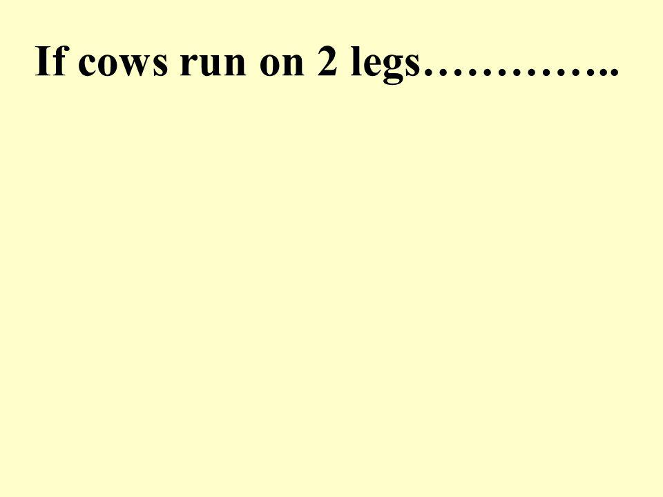 A cow runs on a straight level road.How will the locus of the cow look like.