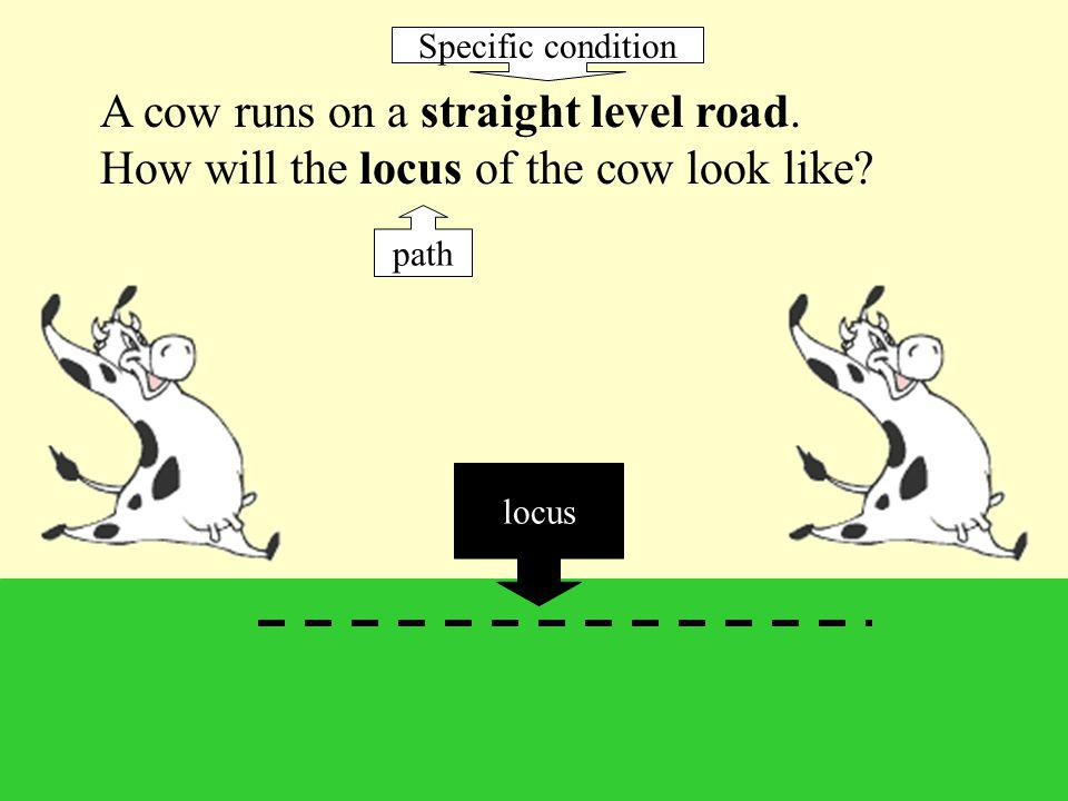 2 loci that you will encounter often are circles and straight lines