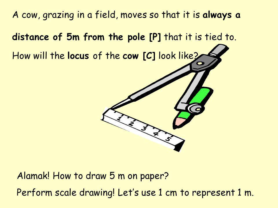 5 cm C The locus of the cow is a circle with centre P & radius 5 m. P